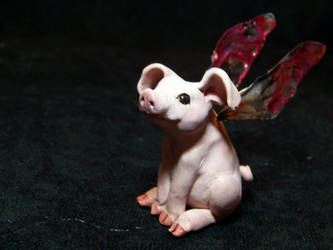 ooak fairy pig by AmandaKathryn