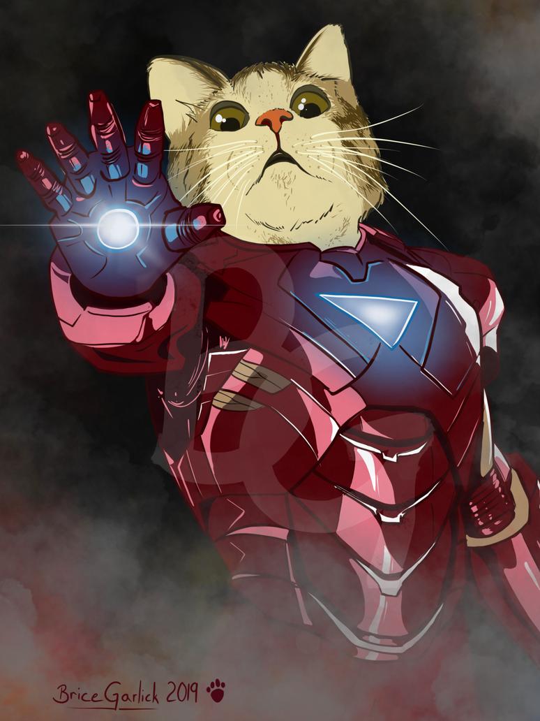 Iron Cat by B2DaRice