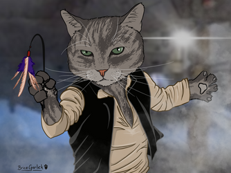 Cat Solo by B2DaRice