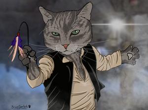 Cat Solo