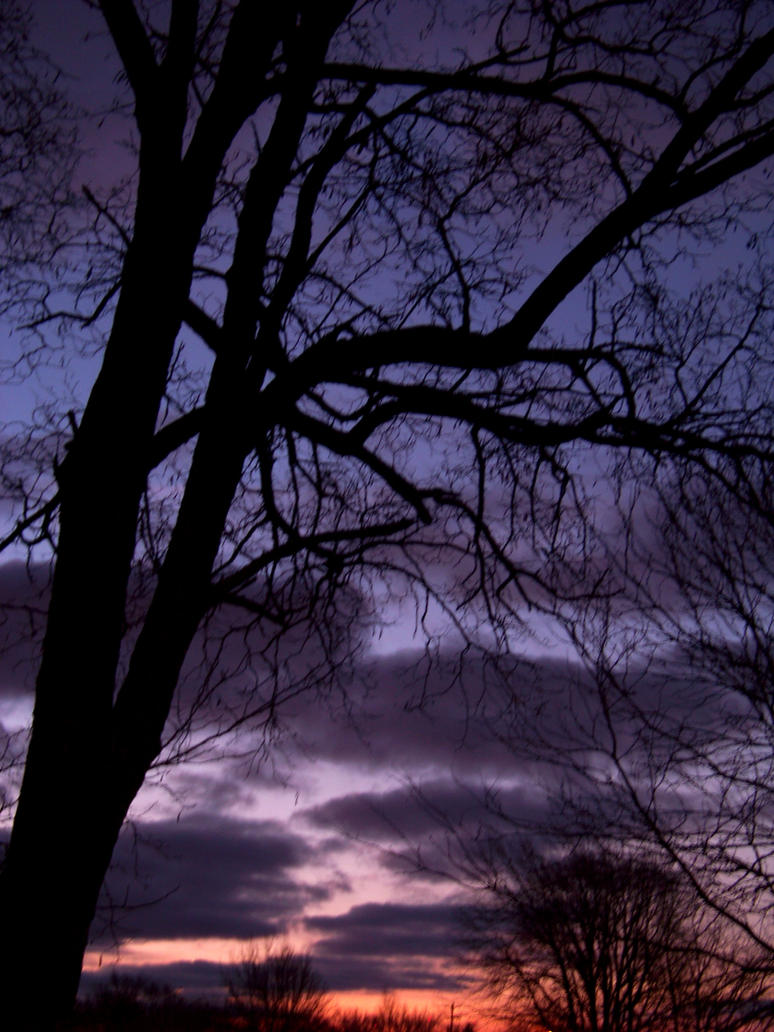 Darkest Before The Dawn 4 by Xavasia