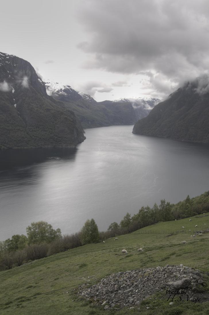 Aurlandsfjorden by Pandinus