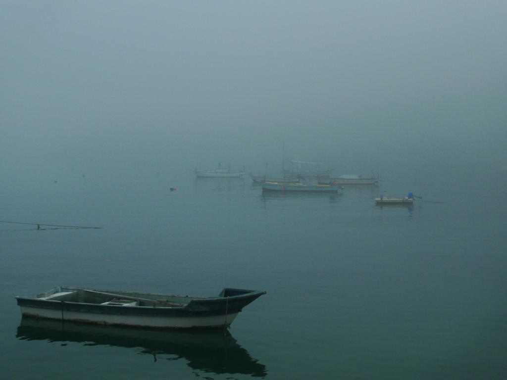 Fishingboats waiting for fog to clear by Pandinus