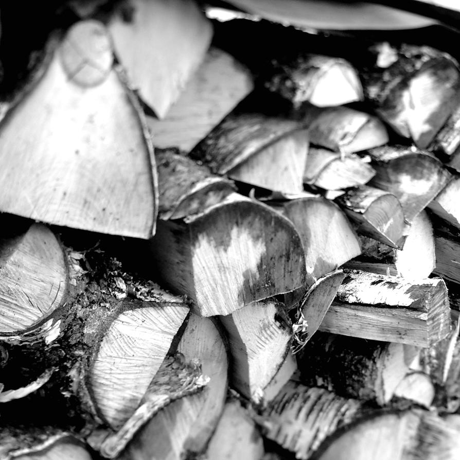 Got wood? by Pandinus