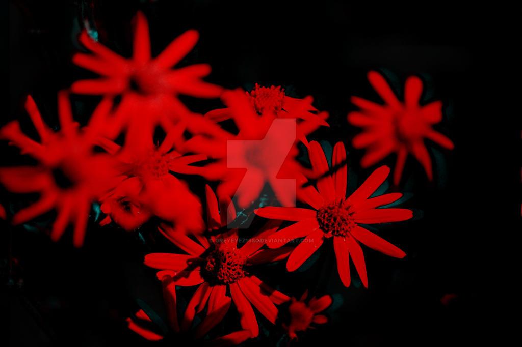 Red Light Special by Greyeyez1980