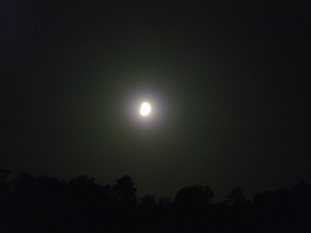 Night glow. by Kazuma27