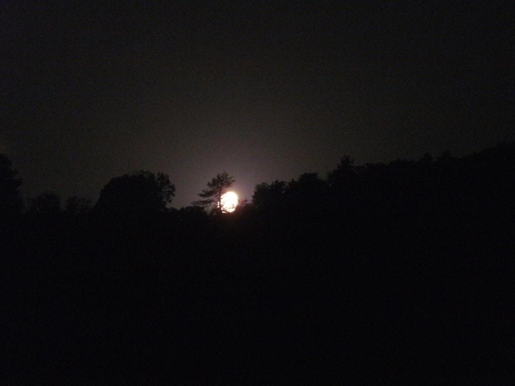 Burning bright, full moon! by Kazuma27