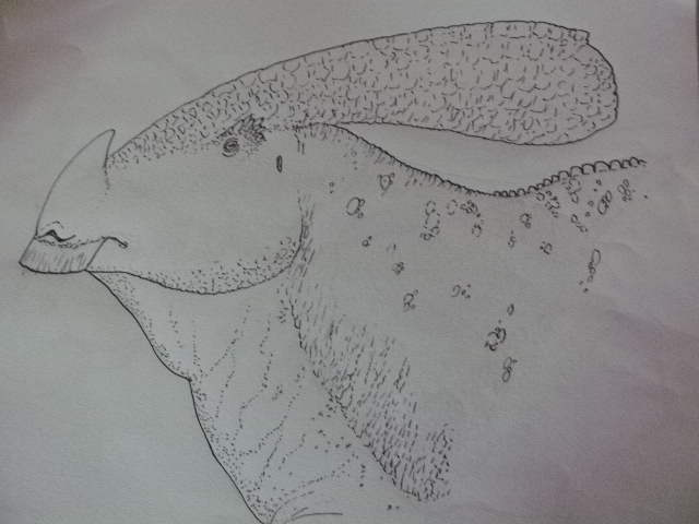 Horned water-drake by Kazuma27