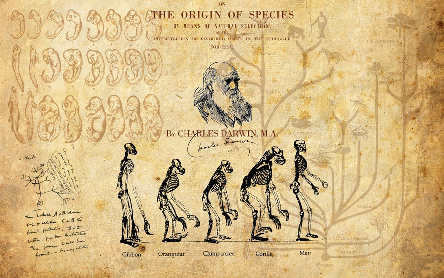 the life and contributions of charles darwin Project gutenberg's the autobiography of charles darwin, by charles darwin  this ebook is for the use of anyone anywhere at no cost and with almost no.