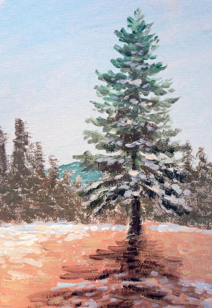 Lake Tahoe Winter Wallpaper Desktop Background: Lake Tahoe Winter Pine 2014 By Landscapist On DeviantArt