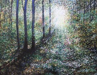 Heavenly Light by Landscapist