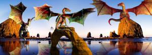 Preening Dragons