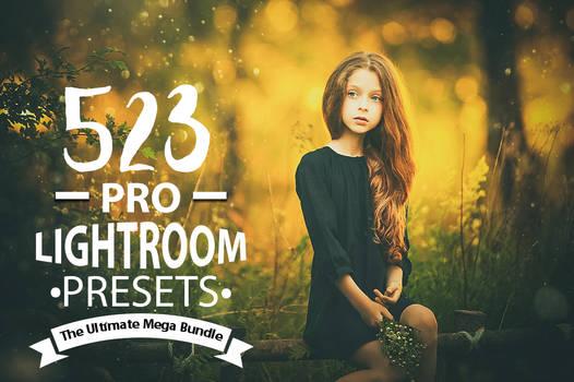 Premium Lightroom Preset Collections by AestheticArtz