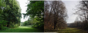 Summer and Winter 2013 by NikolaUgarkovic203