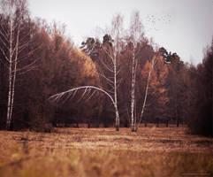 November by Snowfall-lullaby