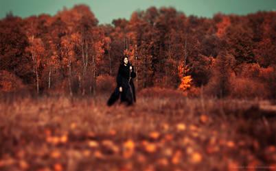 Autumn Lullaby II
