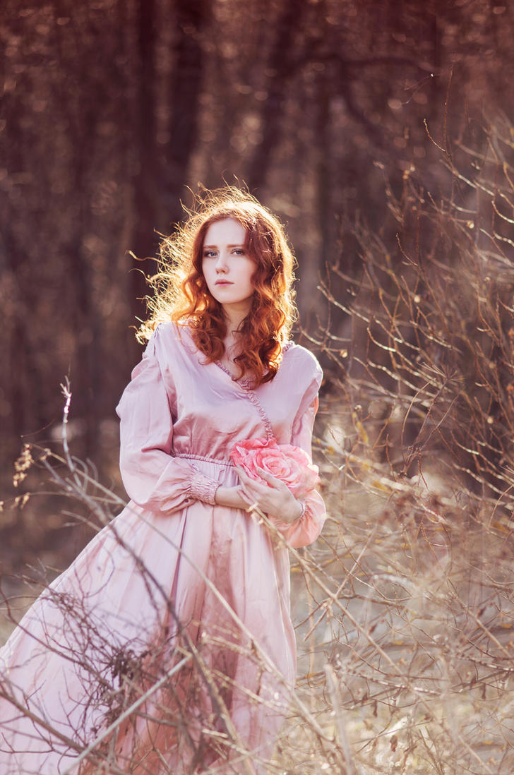 She rose that fell a flower by Snowfall-lullaby