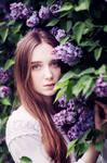 lilac pt I
