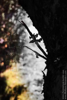 Save me before I fall~