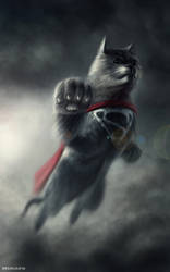 Cat of Steel by NaionMikato