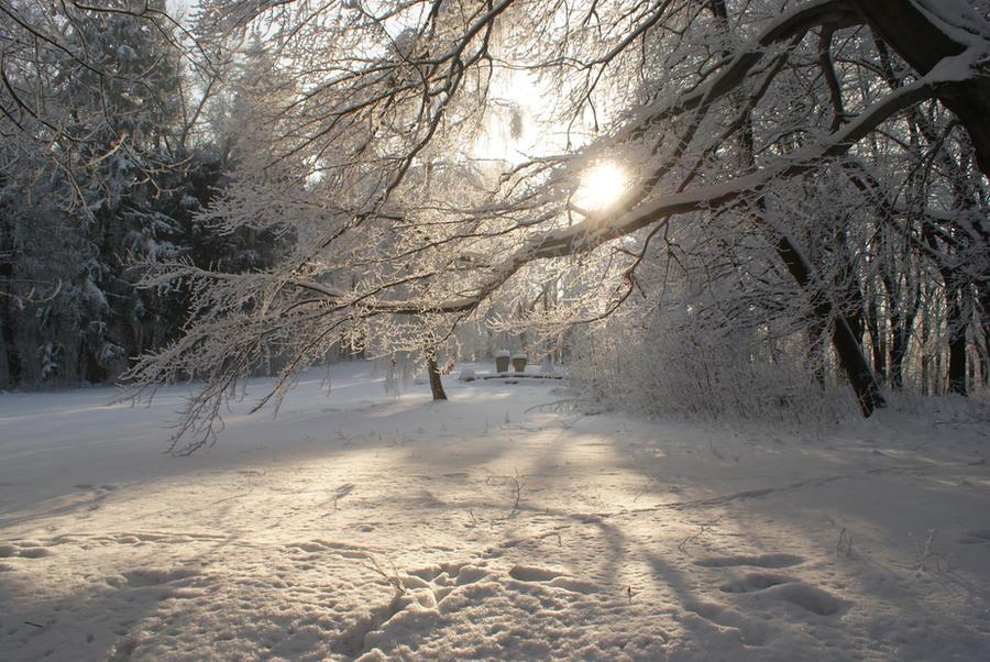 Winter by elionangel