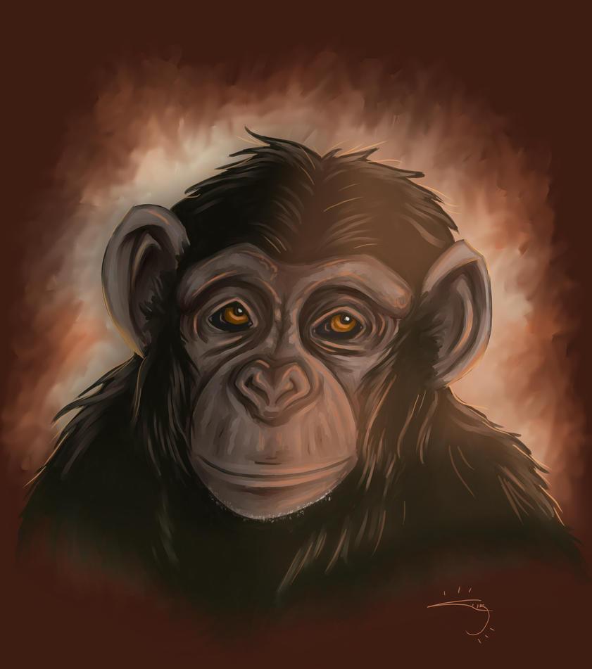 Chimpanzee by blue-but-beautiful