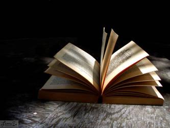 Open Book by lannaephotography