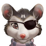 Possum Pirate