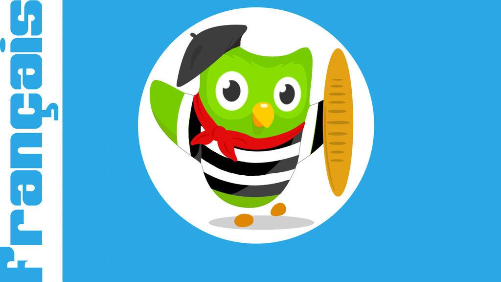 Image result for duolingo french owl