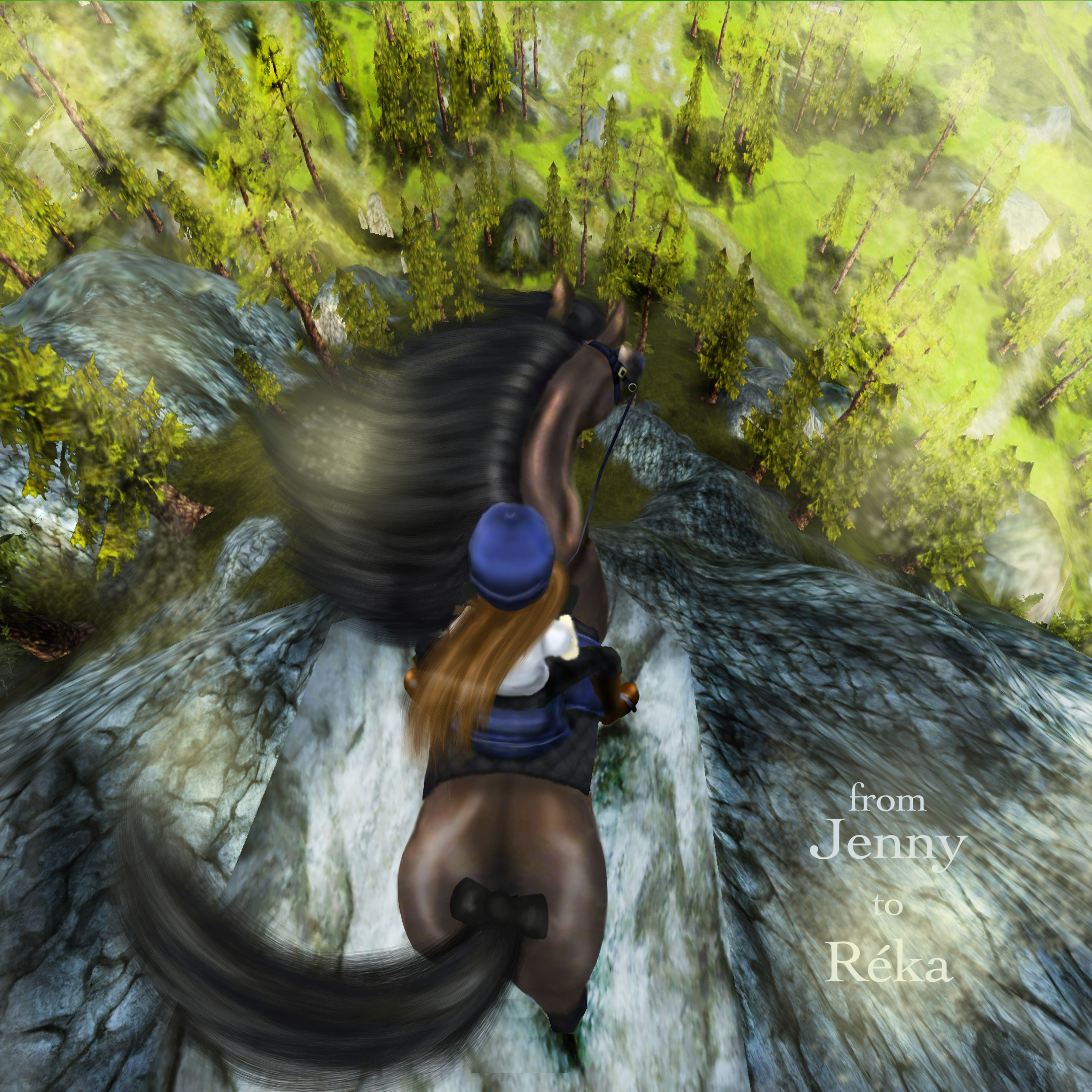 Downloadable Forms  Appaloosa Horse Club