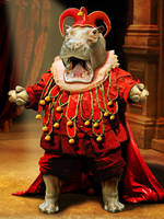 Operatic Hippo by ravenscar45