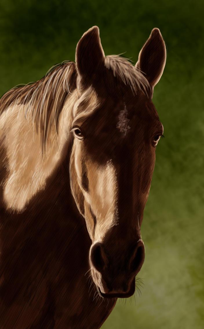 Horse by ravenscar45
