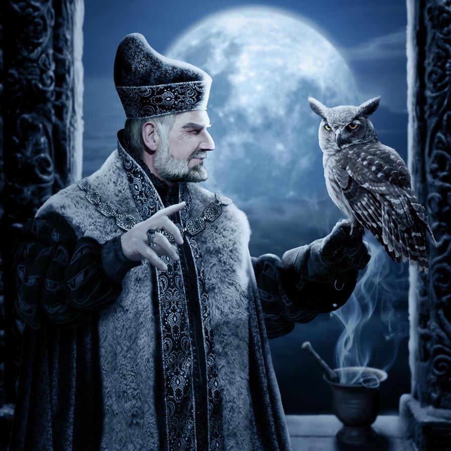 Wizard's Owl by ravenscar45