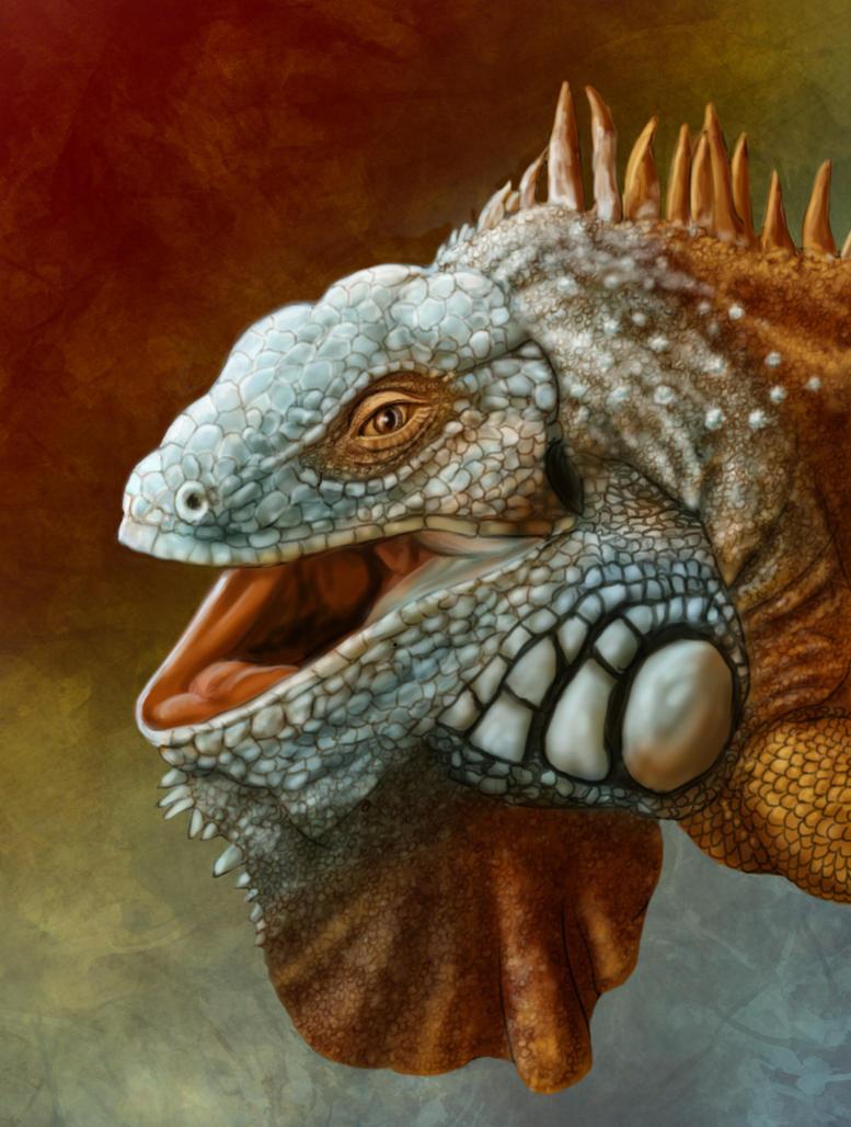 Iguana by ravenscar45