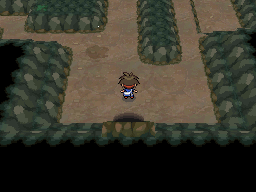 Pokemon Relic White depicted image Game Passage, by PokemonOnlineGames