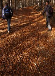 Walking the path by racik