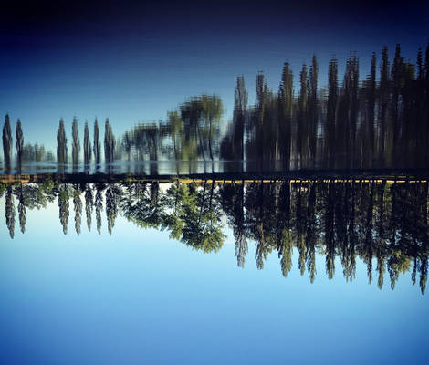 Reflection game