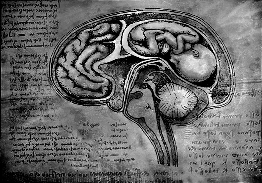 Brain Fetus by Aruthizar on DeviantArt