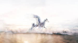 Lucine by seabucktthorn
