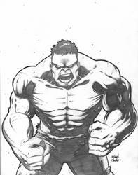 xmas gift: hulk by the-BluePhoenix