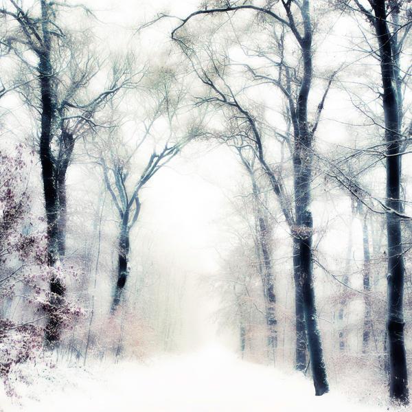 La tempesta by Al-Baum
