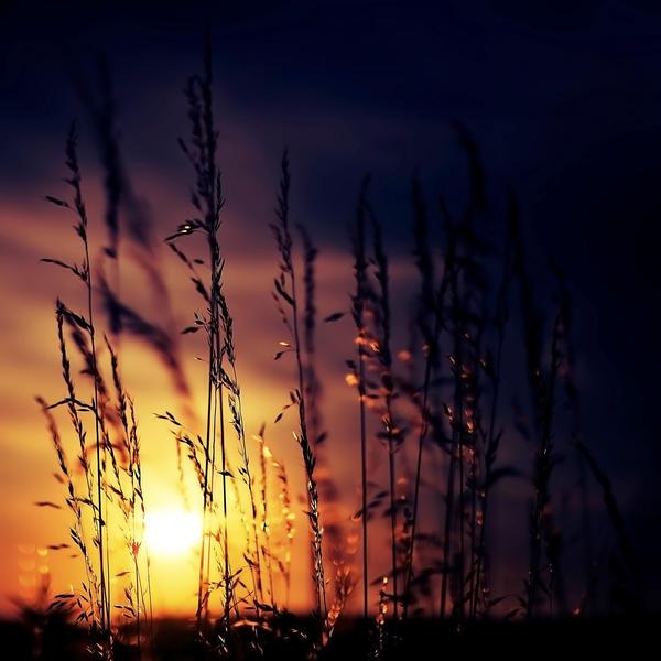 Zalazak sunca-Nebo - Page 2 Yoro_by_aL_baum
