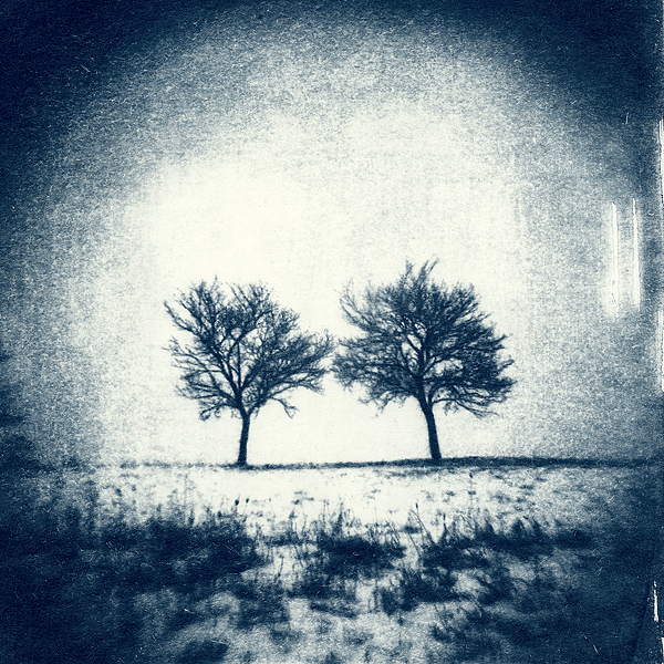 Indecision by Al-Baum