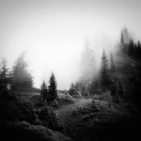 Dans un nuage #2 by Al-Baum