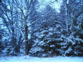 Snowy Snowy Night by slyvenom