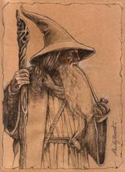 Gandalf always carries his pipe by VIGLED