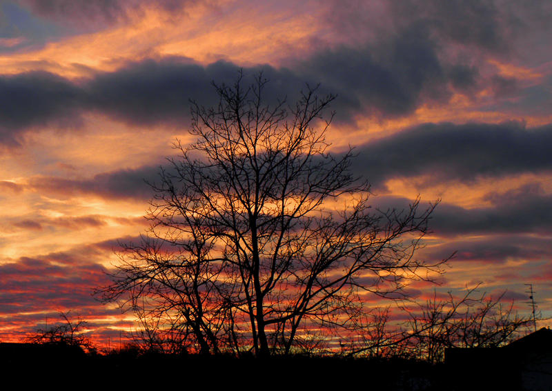 Painted sky by Biljana1313