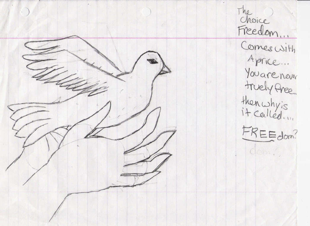 easy dove drawing