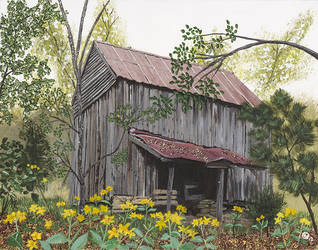 Virginia's Cabin In The Woods by evopics