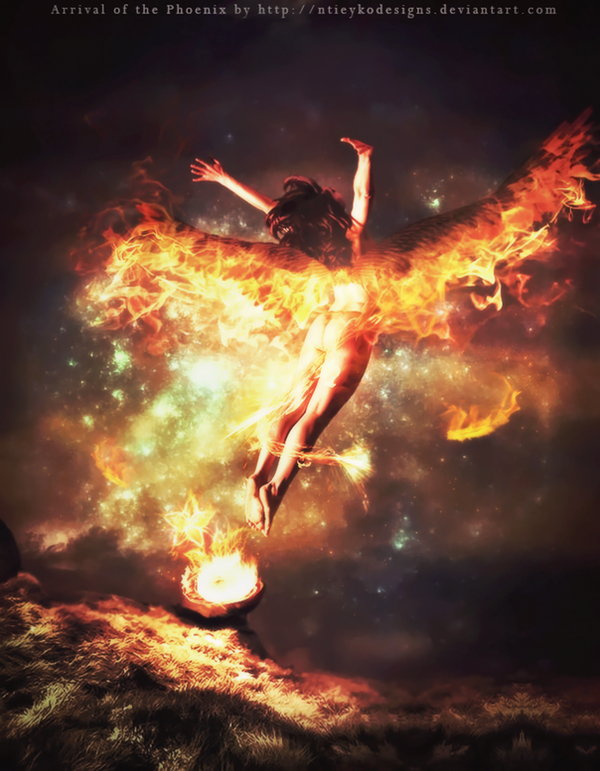Arrival of the Phoenix by Ntieyko